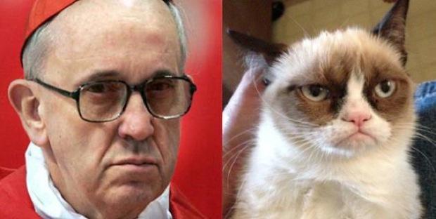 papież vs kot