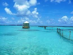 Barbuda - niezwykła wyspa karaibska