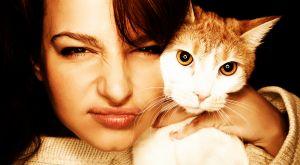 Nosicielami drobnoustrojów wywołujących chlamydię często są koty...