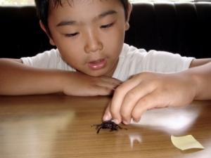 ADHD u dzieci