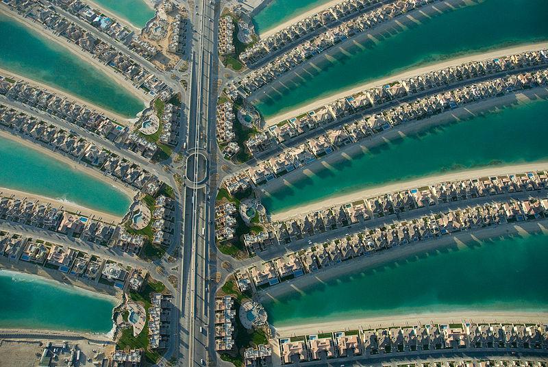 widok na domy na wyspie palmowej