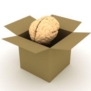 umysł